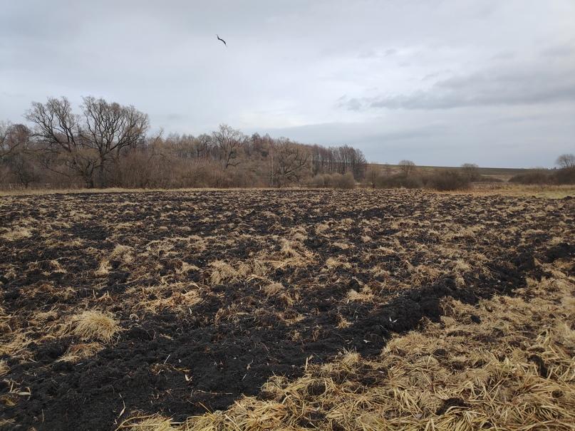 Курские активисты ОНФ требуют разобраться с незаконной распашкой берега реки Псёл