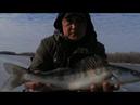 Лёд начинает отходить🥶Подлёдная рыбалка в Астраханской области 🎣Как поймать трофей ❓
