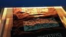 """ПЕЧАТЬ НА ФУТБОЛКАХ on Instagram С сегодняшнего дня будем вас при помощи коротких видео знакомить с процессами печати Вот например финальный этап сушка маек сушке """""""