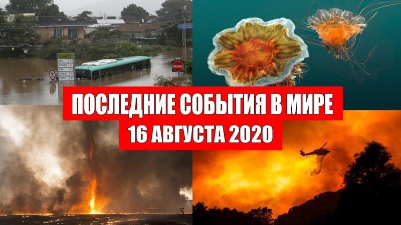 Катаклизмы за день 16 августа 2020 Пульс земли Месть Земли Боль Планеты в мире Гнев Земли