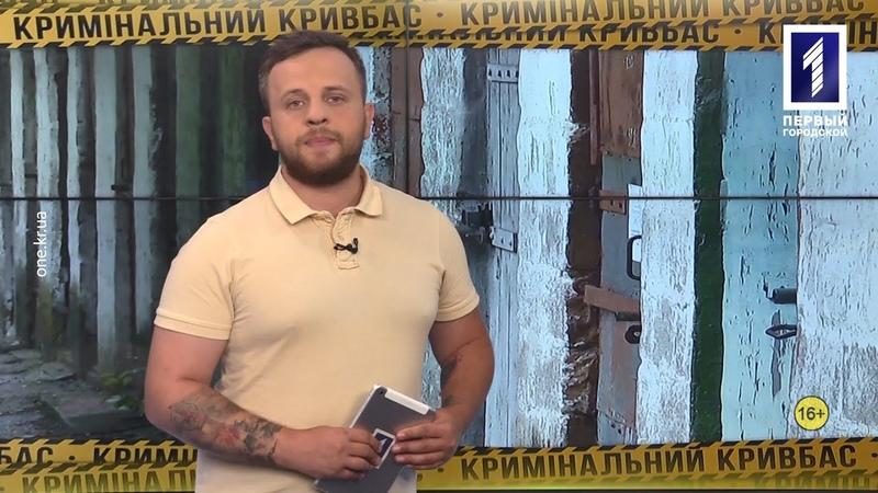 Кримінальний Кривбас звинуватив поліцейських у побитті, випали з вікон, смертельна аварія