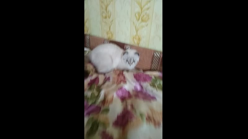 Мика диван