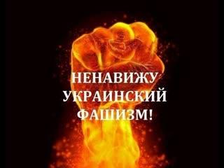 14 февраля 2020 г., посёлок Старомихайловка (Донецк, ДНР) - Обстрел ВСУ со стороны Красногоровки