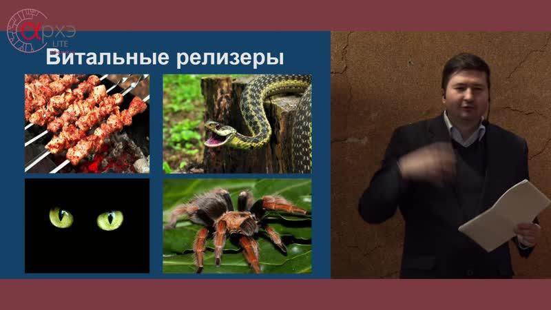 АрхэLite Алексей Вязовский Инстинкты человека