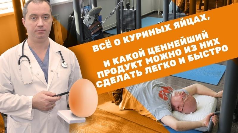 Куриные яйца пищевая ценность и польза для здоровья