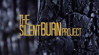 The Silent Burn Project | 20th Anniversary Celebration #AKC20