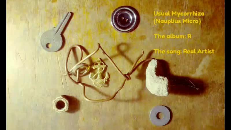 Usual Mycorrhiza (Nauplius Micro) Real Artist (Official Audio)(No Vocal)