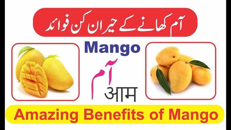 Amazing Benefits of Mango Dar ul Hikmat AAm khane ke Faide آم کھانے کے حیران کن فوائد