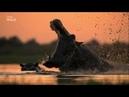 Окаванго река мечты / 1 серия - Рай