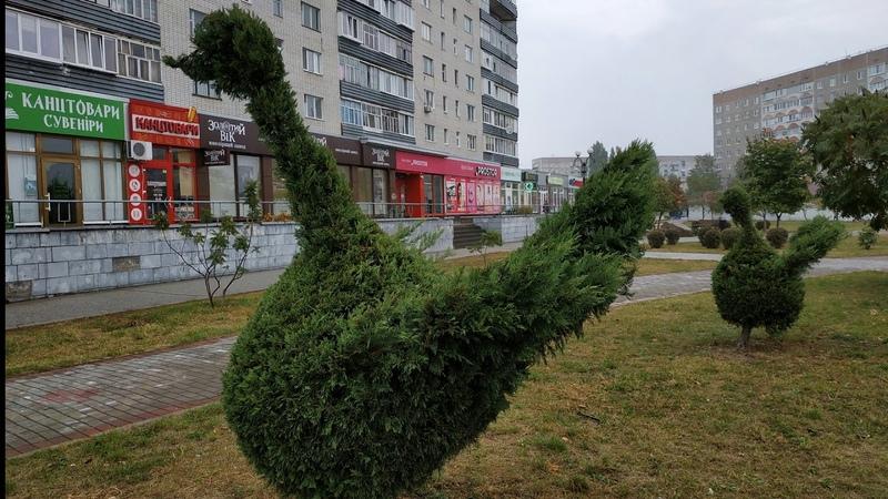 ТОПИАР (Topiary). ВАРАШ