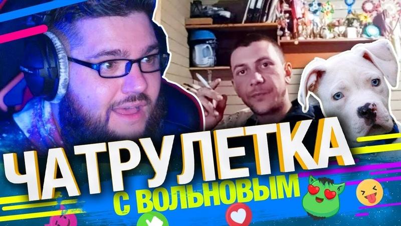 Заводчик Бульдогов Раскрывает Секреты в Чатрулетке с Вольновым
