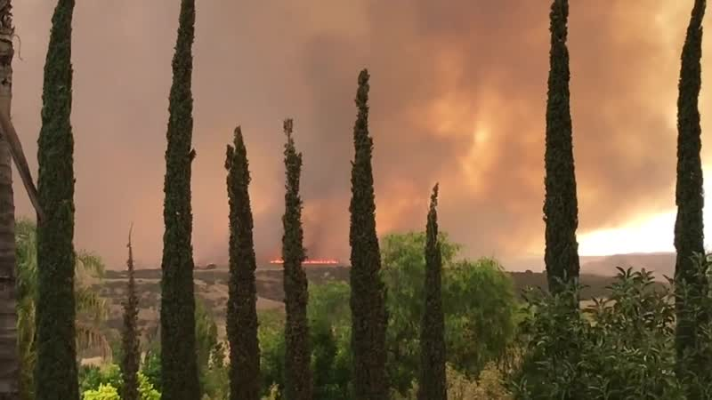 California Wildfire (OCTOBER 2019) The Sandalwood Fire