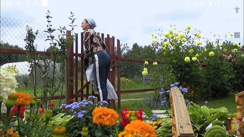 6 соток в середине августа Преображение клумбы с цветами Делаю декоративный карниз для фальш окна