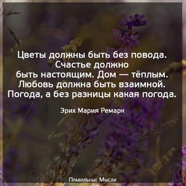 цветы должны быть без повода картинка определяется тому, как