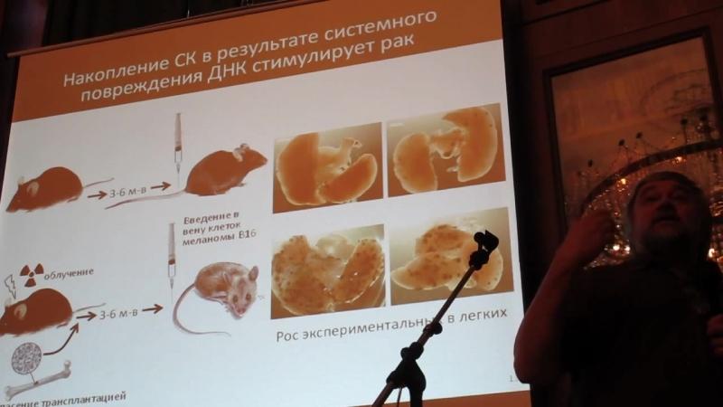Рак. Старение. Сенесцентные клетки Андрей Гудков