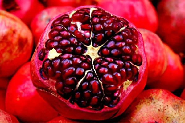 «Карфагенское» яблоко, изображение №4