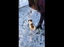 Видео от Katrinacorsa Katrinacorsa