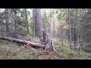По следам норвежского батальона_07