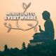 Mindfulness - Eagle's Flight