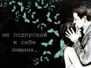 Персональный фотоальбом Натальи Шлыковой