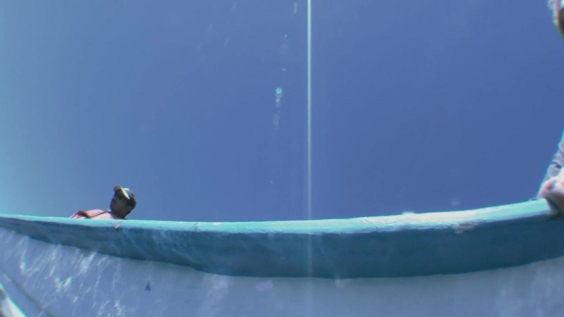 Морские гиганты Ocean Giants 2 серия Глубокие мысли 2011