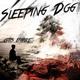 Sleeping Dog - Rain