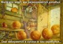 Светлана Караваева фотография #9
