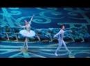 Анна НИКУЛИНА, Якопо ТИССИ. Сцена из 2-го акта балета Спящая красавица Чайковского. Большой театр.