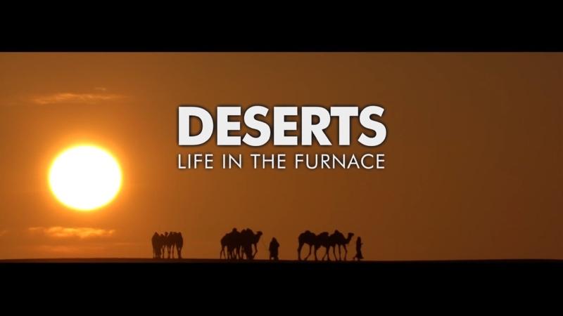 BBC Плaнeта людeй Чacть 2 Пyстыни Жизнь В Пeклe Life In the Furnace Deserts HD