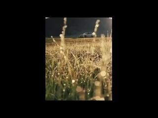 Из Нашего Instagram От накуренных для накуренных #569 (Гонцы 420) ЧИТАЙ ОПИСАНИЕ!!!✌🤓 Музыка