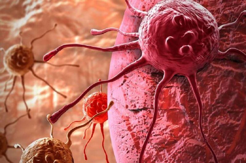 Диета от рака, имеющая универсальное значение