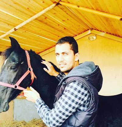 Hossam Gharib