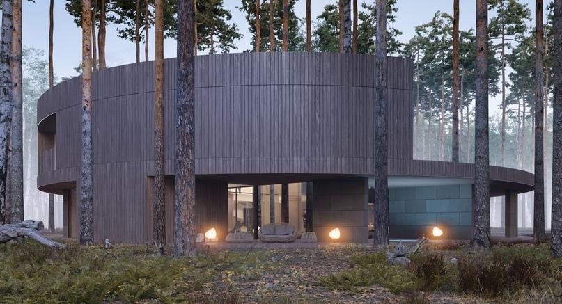 В польском лесу построили дом оригинальной формы