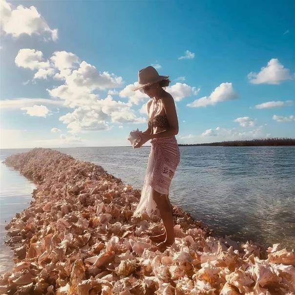 Кладбища ракушек на Карибах