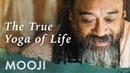 Настоящая йога жизни - мощная короткая медитация с Муджи (субтитры)