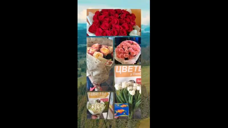 Самые красивые розы Донецка