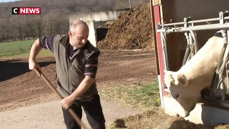 Saône et Loire plus d'un tiers des agriculteurs sont en burn out