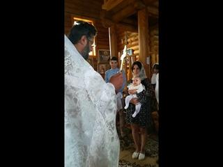 Такого чуда вы ещё не видели.Крещение. Мира.
