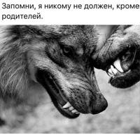 Фотография Алексея Фёдорова