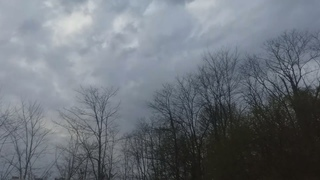 i lay in the yard, dream of being lost in the clouds       20210420 200443