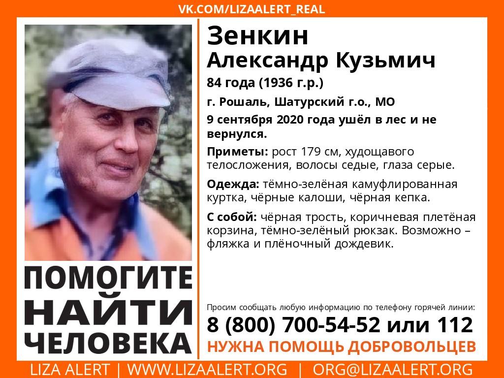 Внимание! Помогите найти человека! Пропал #Зенкин Александр Кузьмич, 84 года, г