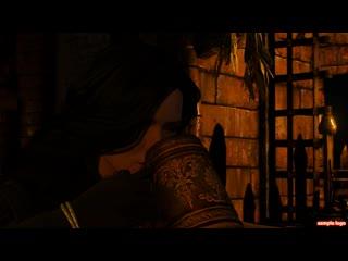 The Witcher 3 Wild Hunt. Прохождение №114
